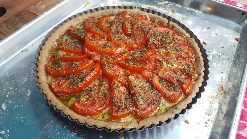 fresh tomato pie with herbs, cheddar cheese and a whole wheat crust