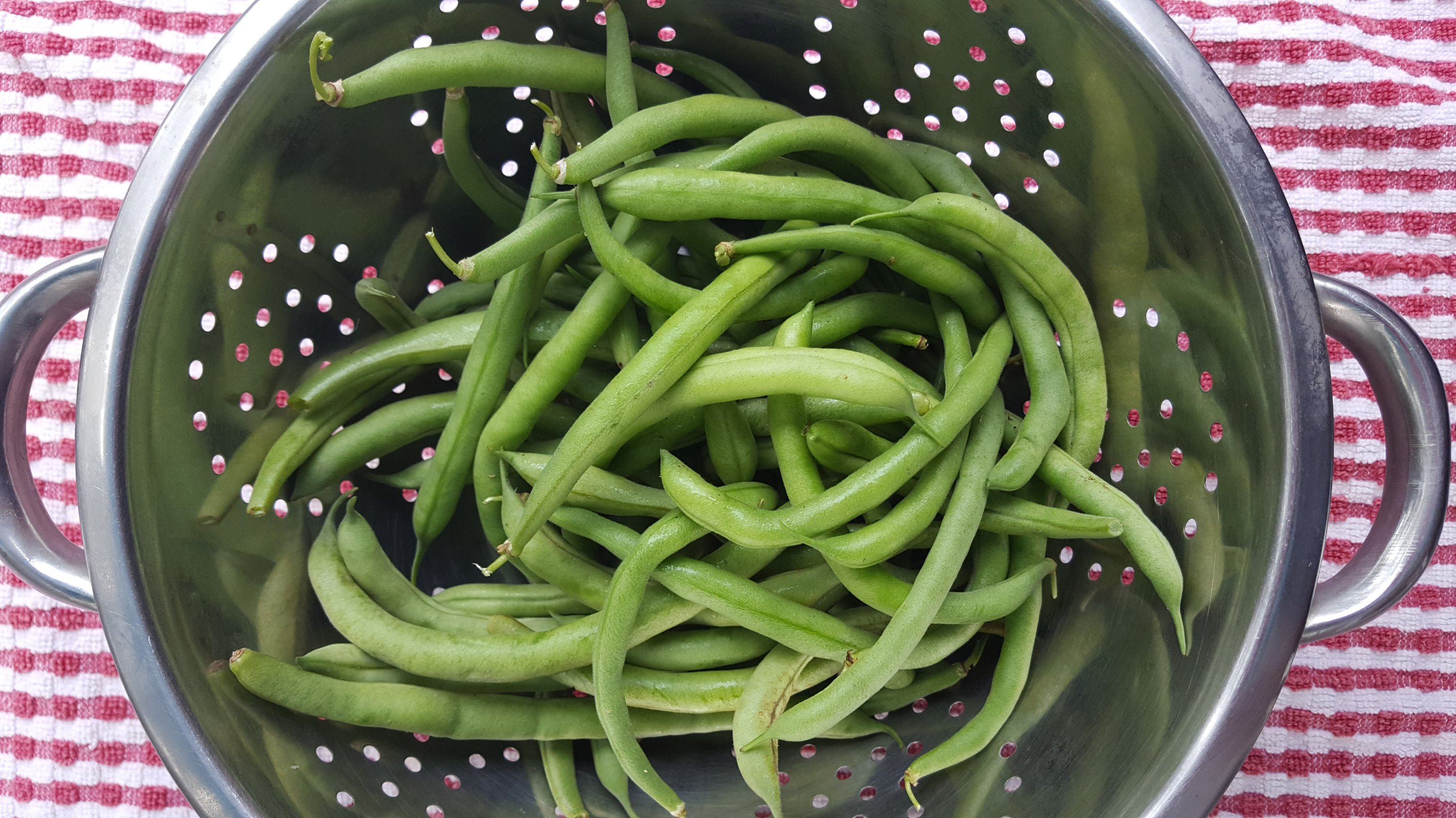 fresh green beans in a colander